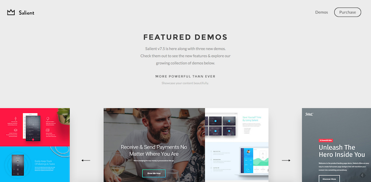 Salient theme WordPress